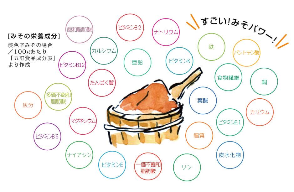 味噌の栄養